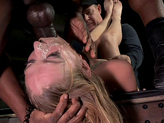 Gorgeous blonde filly gets bound and nailed by horny dudes