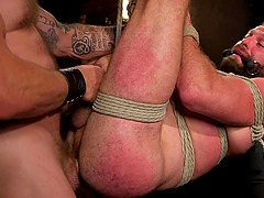 BDSM and a slave role is amazing experience with gay Donnie Argento