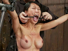 Hot Asian Chick Tia Ling Bound and Tortured in BDSM Vid